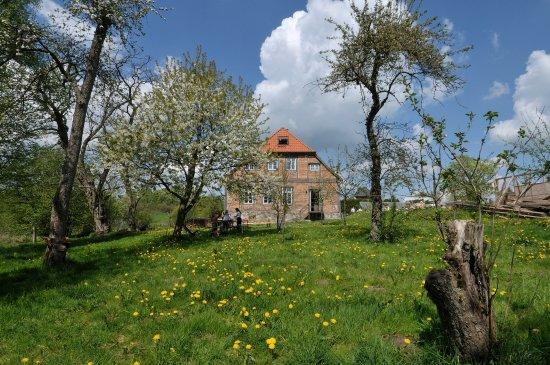 Kneese Dorf, Alemania: Das Haus von der Gartenseite aus gesehen