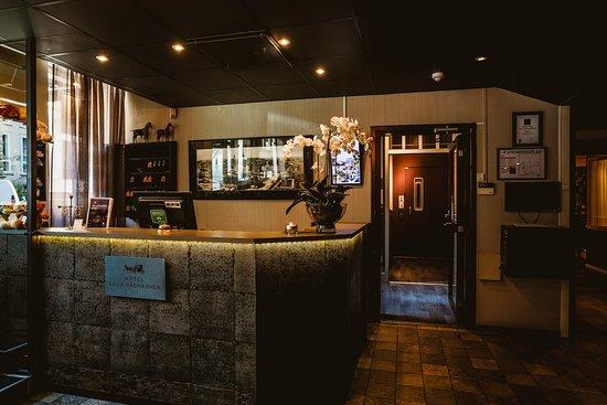 Freys Hotel Lilla Radmannen: Reception
