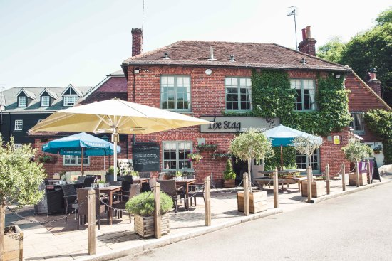 Image result for the stag on the river godalming