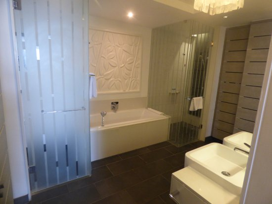 salle de bain avec douche et baignoire ainsi que de grand ...
