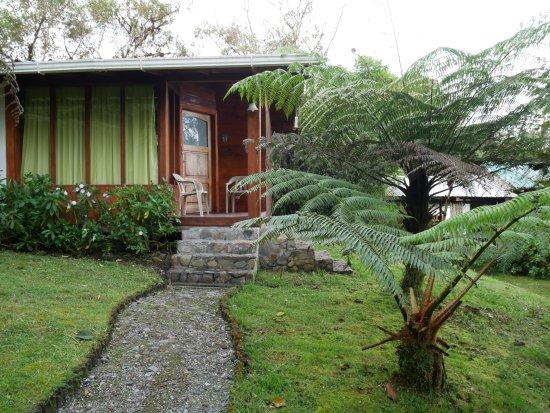 Cabanas San Isidro: Hotelbungalow