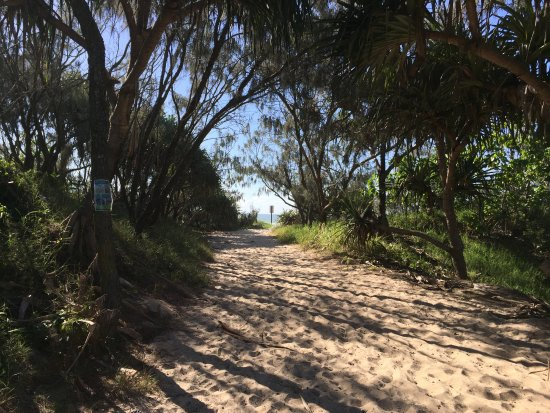 Peregian Beach, Australia: Track to the beach