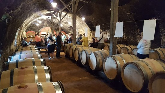 Quincie-en-Beaujolais, France : The tasting starts!
