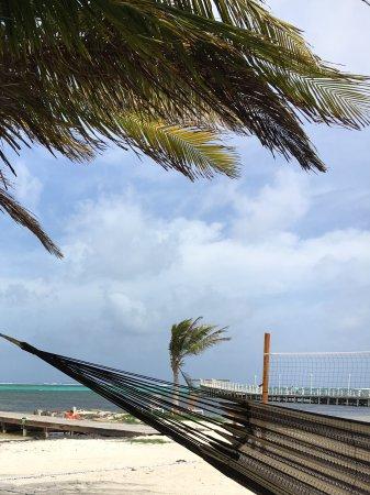 Las Terrazas Resort: Hammocks, looking south from beach entrance