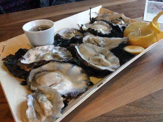 Ternaard, Nederland: fresh oysters