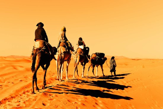 Excursions Marrakech Every days