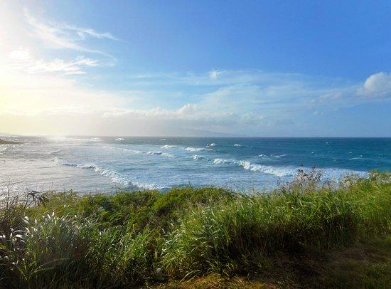 Paia, Hawái: Surf at park