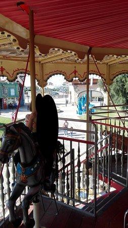 Miragica - Terra di Giganti: cavallini