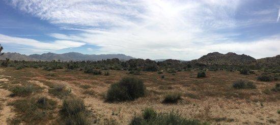 Twentynine Palms, Californien: Random stop for the view.