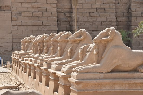 Vacations To Go Travel : Sphinxes