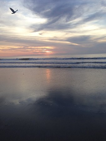 Amelia Surf & Racquet Club : Sunrise on a peaceful morning walk