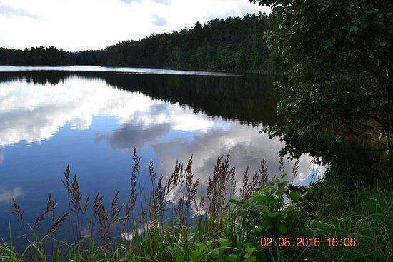 Viitna Korts: озеро, в которое смотрится небо