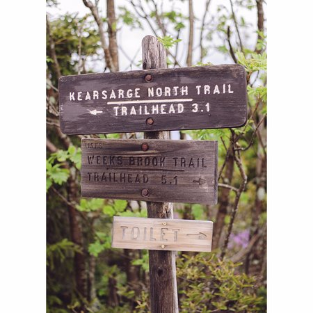 Mount Kearsarge: Trail is signposted.