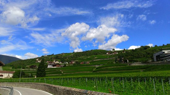 Klosterneuburg, Austria: DSC_0028_10_large.jpg