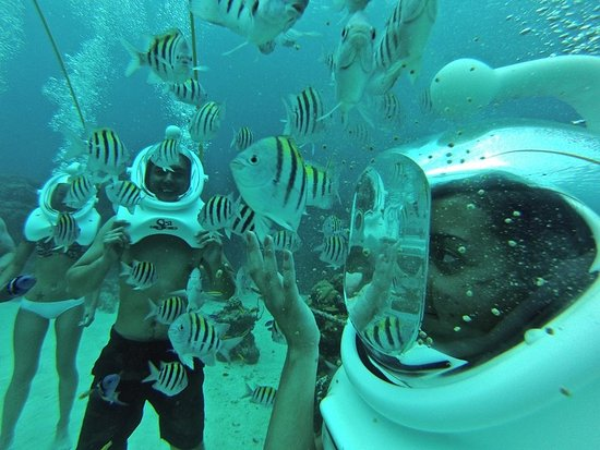 George Town, Grand Cayman: playing with the fish on SeaTrek