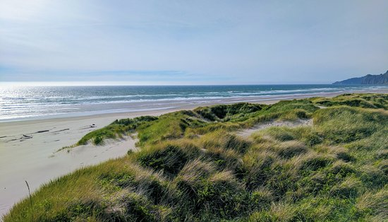 Nehalem, Oregón: Dunes are quite tall, about 30ft.