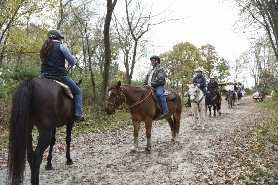 Granger, IA: Come enjoy a trail ride through the beautiful trails of Jester Park by one of our friendly guide