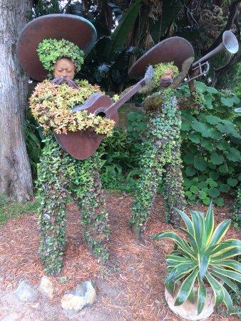 San Diego Botanic Garden: Mariachi Topiary In San Diego Botanical Garden
