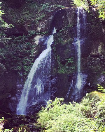 Myrtle Point, OR: elk creek falls, a short drive from myrtle grove