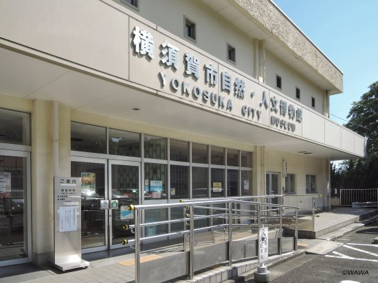 Yokosuka City Museum of Nature and Human Culture