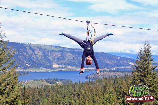 Oyama, แคนาดา: Stunning views. 5 courses. Zip, Climb, Jump, Play, Soar. Fun for everyone (age 3&up accommodated