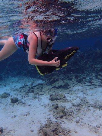 Savaneta, Aruba: photo3.jpg