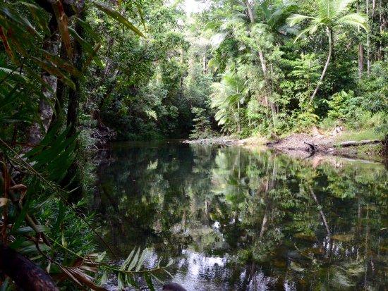 Diwan, Australia: photo6.jpg