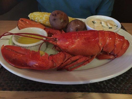 North 26 Restaurant and Bar: photo1.jpg