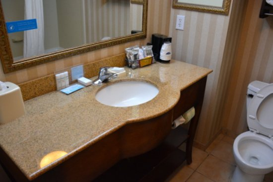 Hampton Inn & Suites Cashiers-Sapphire Valley: Very Clean Bathroom and I did not leave the seat up