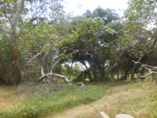 Newhall, Californien: Trail