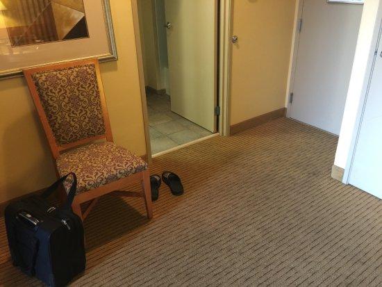 Embassy Suites by Hilton Phoenix-Scottsdale Photo