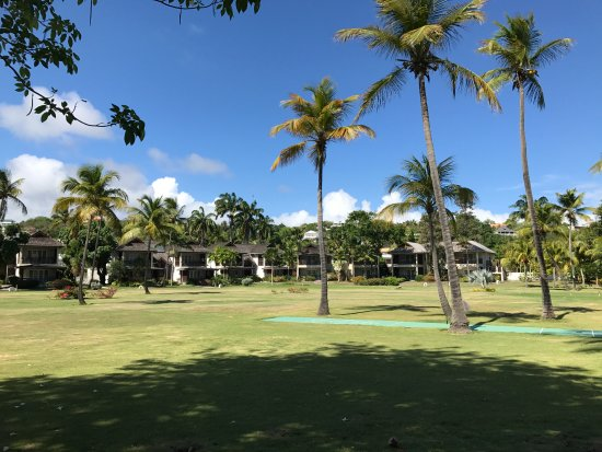 Calabash Luxury Boutique Hotel & Spa: Lawn view from the beach