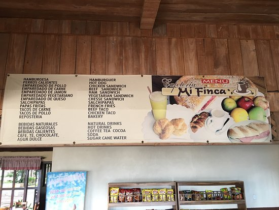 Restaurante Mi Finca: Wonderful Cafe along the Pan American Highway. Full of Toucans and Excellent coffee!