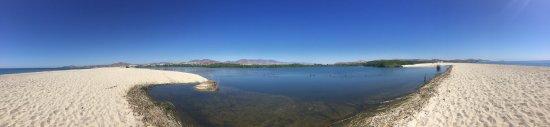 San Jose's Estuary and Bird Sanctuary: photo0.jpg