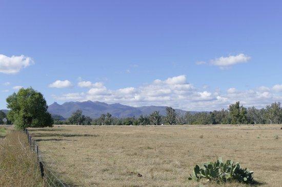 Mt Kaputar National Park: driving out from Narrabri towards Mt Kaputar