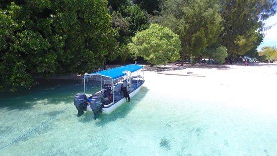 Oasis Palau: photo5.jpg