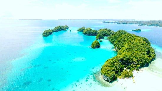 Oasis Palau