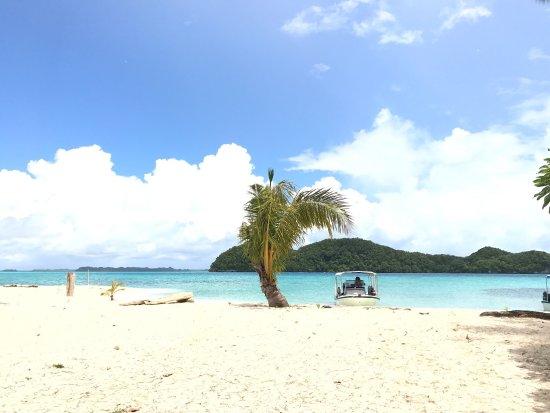 Oasis Palau: photo7.jpg