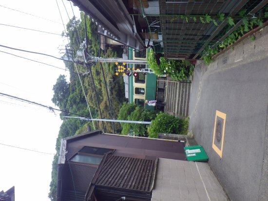 Goryo Shrine: 江ノ電が参道を横切る