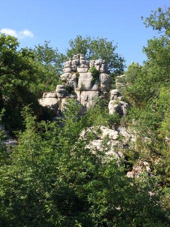 Lablachere, France: Bois de Paiolive