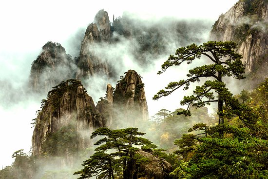 China Odyssey Tours Huangshan