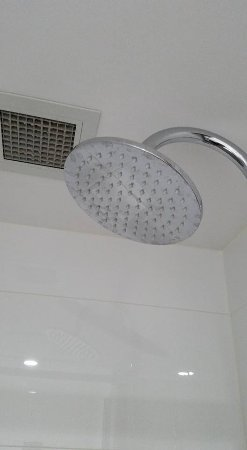 the urban newtown great size shower nozzle