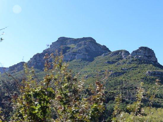 Constantia, Sydafrika: Paysage splendide