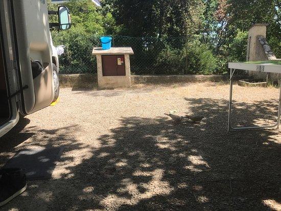 Camping Parc des Maurettes : photo0.jpg