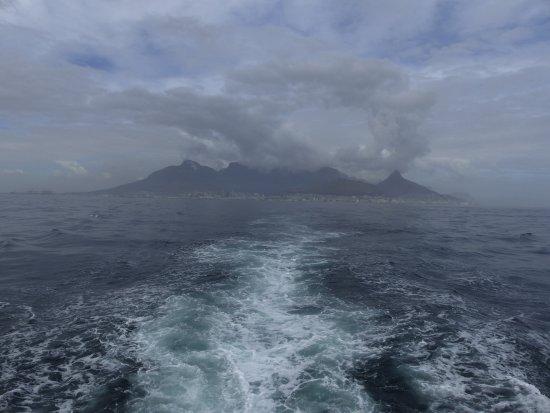 Kapsztad — centrum, Republika Południowej Afryki: Vue sur Cape Town