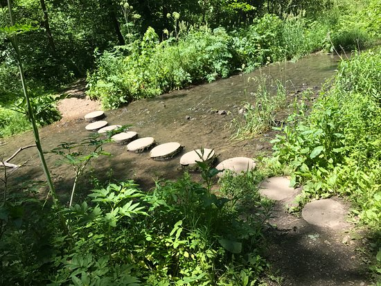 "Mount Morris, IL: ""Stepping Stones"" for easy creek crossing"