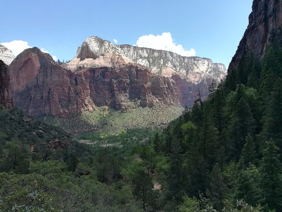 Zion Canyon Scenic Drive: view