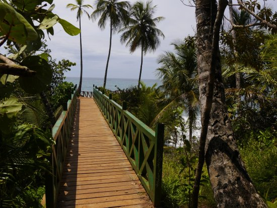 Gandoca - Manzanillo Wildlife Refuge: the bridge