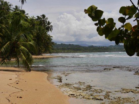 Gandoca - Manzanillo Wildlife Refuge: beach