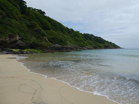 Carbis Bay Beach : photo3.jpg
